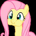 avatar for WTFunk