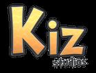 avatar for kizstudios