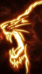 avatar for salder119
