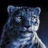 avatar for UrDemise