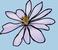 avatar for arh4543