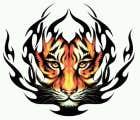 avatar for ubox02