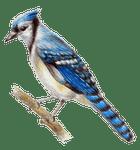 avatar for ProphetUni