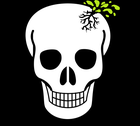 avatar for Poisonuskull