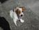 avatar for LilRocker21094