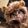 avatar for imSaBO