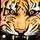 avatar for TigersVSLIONS