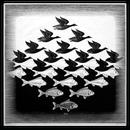 avatar for wanderingivy