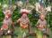 avatar for pearscomic