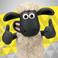 avatar for SKS122