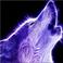 avatar for WolfFishGaming
