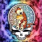 avatar for BartP41