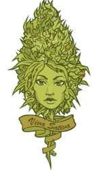 avatar for BrigitteM9