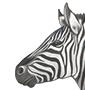 avatar for ZebraArts